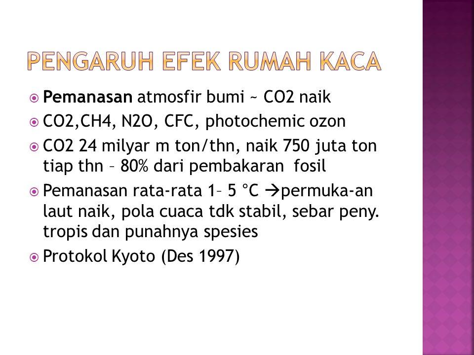  CO, NOx, SO2; Halocarbon: halon, CFC, lead, CO2, CH4 Photochemical smog (ground level ozon): prekursor ozon, NOx + senyawa organik reaktif di lapisan bawah atmosfir  Aktivitas (75%)  tanaman, sarana, kes.