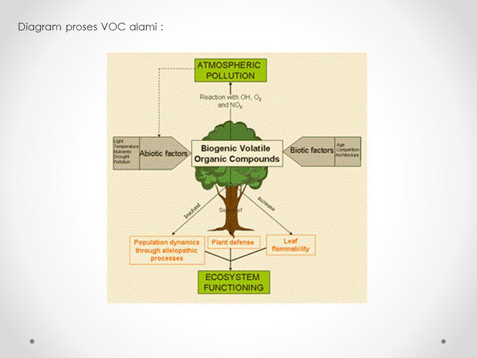 Diagram proses VOC alami :