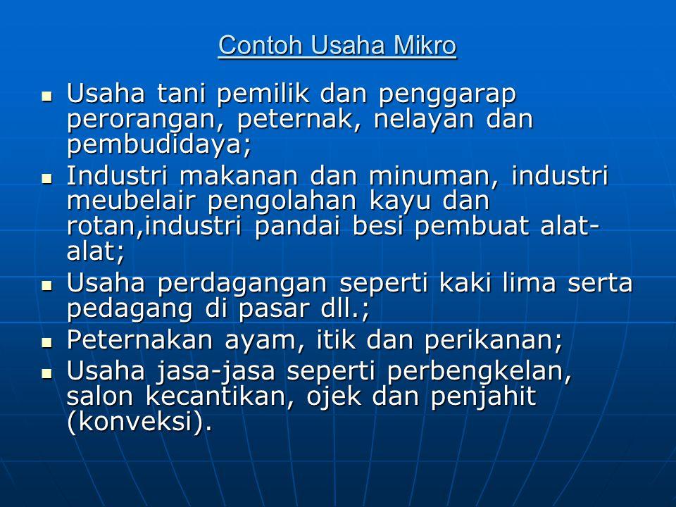 Contoh Usaha Mikro Usaha tani pemilik dan penggarap perorangan, peternak, nelayan dan pembudidaya; Usaha tani pemilik dan penggarap perorangan, petern