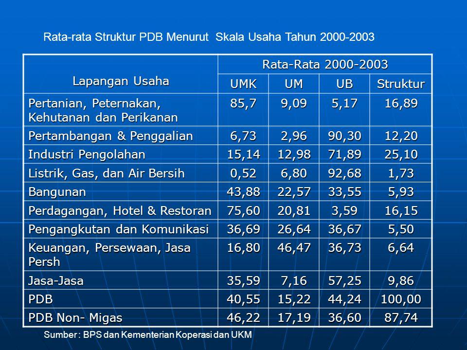 Lapangan Usaha Rata-Rata 2000-2003 UMKUMUBStruktur Pertanian, Peternakan, Kehutanan dan Perikanan 85,79,095,1716,89 Pertambangan & Penggalian 6,732,9690,3012,20 Industri Pengolahan 15,1412,9871,8925,10 Listrik, Gas, dan Air Bersih 0,526,8092,681,73 Bangunan43,8822,5733,555,93 Perdagangan, Hotel & Restoran 75,6020,813,5916,15 Pengangkutan dan Komunikasi 36,6926,6436,675,50 Keuangan, Persewaan, Jasa Persh 16,8046,4736,736,64 Jasa-Jasa35,597,1657,259,86 PDB40,5515,2244,24100,00 PDB Non- Migas 46,2217,1936,6087,74 Sumber : BPS dan Kementerian Koperasi dan UKM Rata-rata Struktur PDB Menurut Skala Usaha Tahun 2000-2003