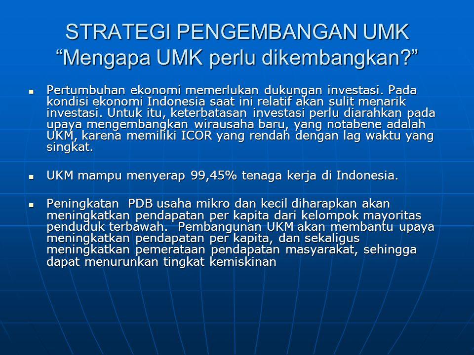 """STRATEGI PENGEMBANGAN UMK """"Mengapa UMK perlu dikembangkan?"""" Pertumbuhan ekonomi memerlukan dukungan investasi. Pada kondisi ekonomi Indonesia saat ini"""