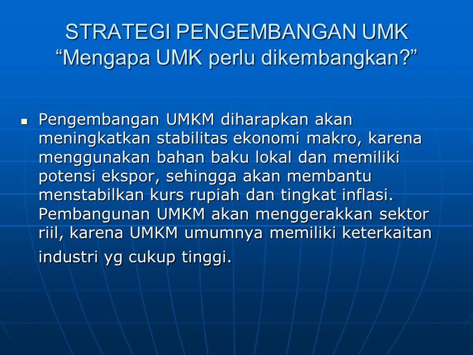 STRATEGI PENGEMBANGAN UMK Mengapa UMK perlu dikembangkan? Pengembangan UMKM diharapkan akan meningkatkan stabilitas ekonomi makro, karena menggunakan bahan baku lokal dan memiliki potensi ekspor, sehingga akan membantu menstabilkan kurs rupiah dan tingkat inflasi.
