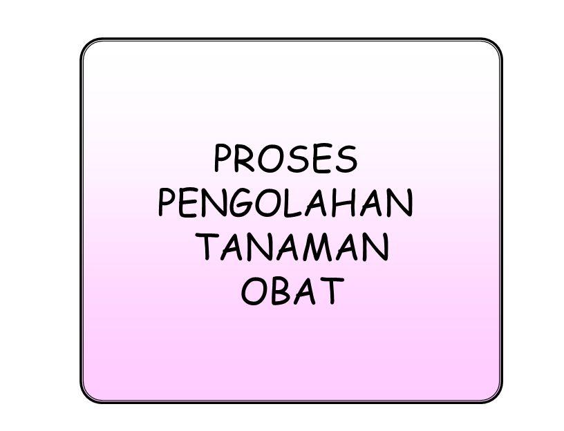 PROSES PENGOLAHAN TANAMAN OBAT