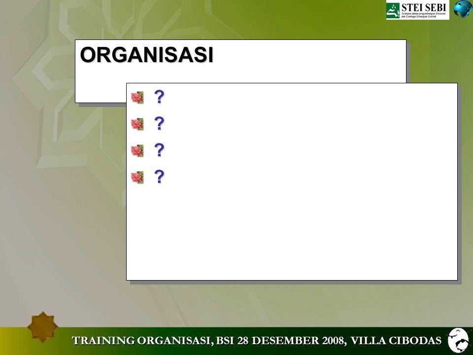 TRAINING ORGANISASI, BSI 28 DESEMBER 2008, VILLA CIBODAS Lingkungan Eksternal Eksternal Internal Internal