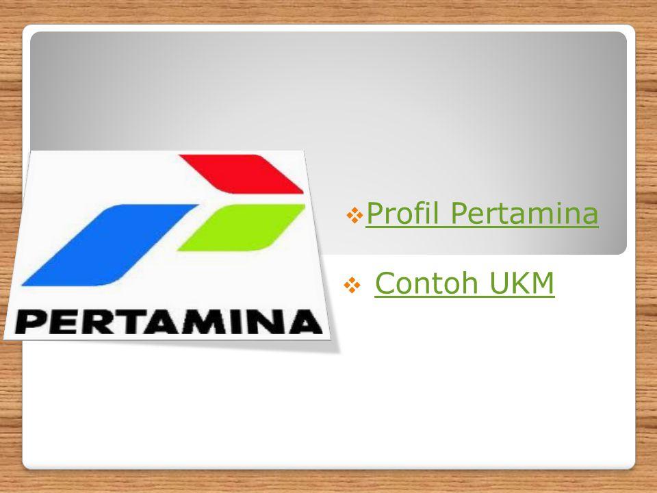 PT PERTAMINA (Persero) Profil PT PERTAMINA (Persero) PERTAMINA adalah perusahaan minyak dan gas bumi yang dimiliki Pemerintah Indonesia (National Oil Company), yang berdiri sejak tanggal 10 Desember 1957 dengan nama PT PERMINA.