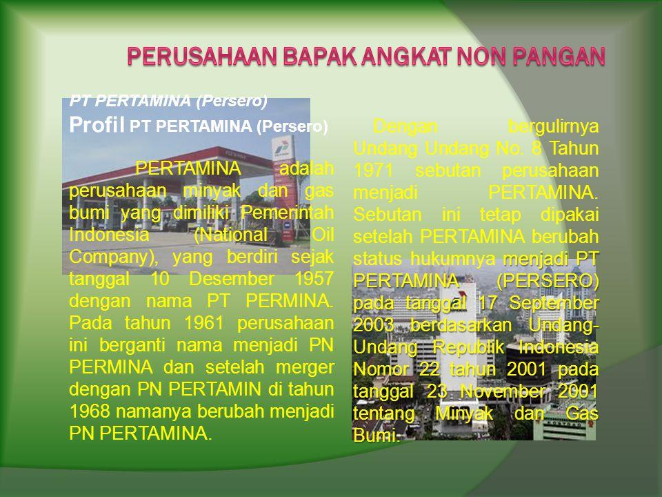 PT PERTAMINA (Persero) Profil PT PERTAMINA (Persero) PERTAMINA adalah perusahaan minyak dan gas bumi yang dimiliki Pemerintah Indonesia (National Oil