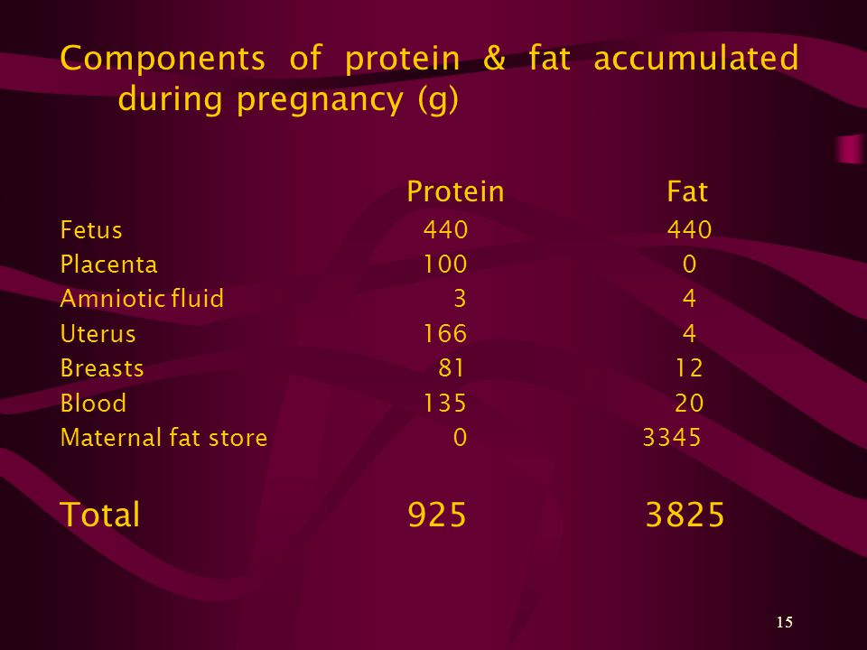 15 Components of protein & fat accumulated during pregnancy (g) ProteinFat Fetus 440440 Placenta 100 0 Amniotic fluid 3 4 Uterus 166 4 Breasts 81 12 Blood 135 20 Maternal fat store 0 3345 Total925 3825
