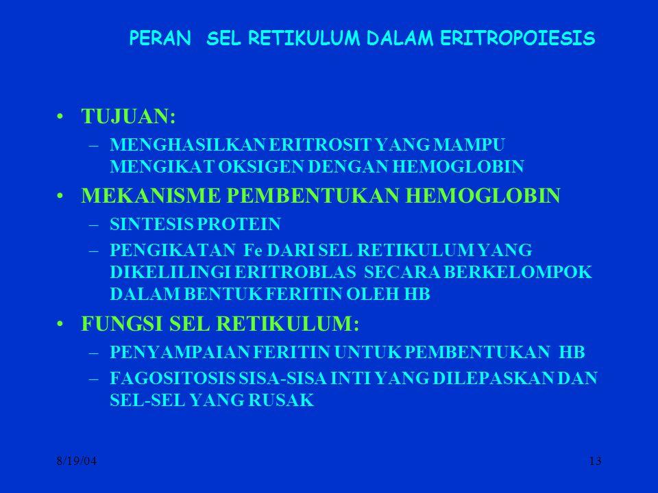 8/19/0413 PERAN SEL RETIKULUM DALAM ERITROPOIESIS TUJUAN: –MENGHASILKAN ERITROSIT YANG MAMPU MENGIKAT OKSIGEN DENGAN HEMOGLOBIN MEKANISME PEMBENTUKAN