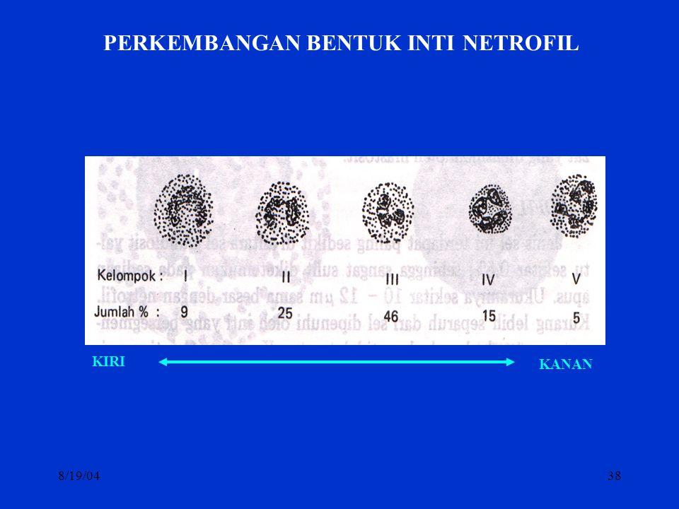 8/19/0438 PERKEMBANGAN BENTUK INTI NETROFIL KIRI KANAN