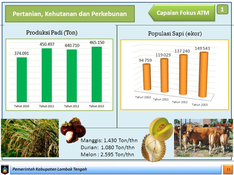Pemerintah Kabupaten Lombok Tengah 11 Pertanian, Kehutanan dan Perkebunan Populasi Sapi (ekor) Manggis: 1.430 Ton/thn Durian: 1.080 Ton/thn Melon : 2.