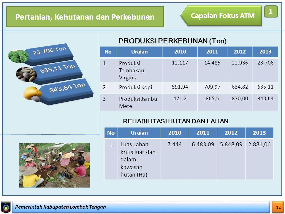 Pemerintah Kabupaten Lombok Tengah 12 Capaian Fokus ATM 1 NoUraian2010201120122013 1Produksi Tembakau Virginia 12.11714.48522.93623.706 2Produksi Kopi