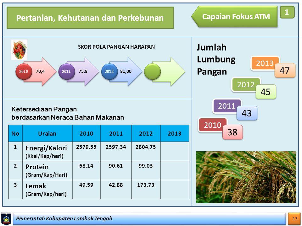 Pemerintah Kabupaten Lombok Tengah 13 Capaian Fokus ATM 1 SKOR POLA PANGAN HARAPAN NoUraian2010201120122013 1 Energi/Kalori (Kkal/Kap/hari) 2579,55259