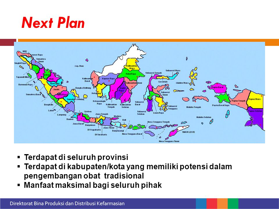 Next Plan  Terdapat di seluruh provinsi  Terdapat di kabupaten/kota yang memiliki potensi dalam pengembangan obat tradisional  Manfaat maksimal bagi seluruh pihak