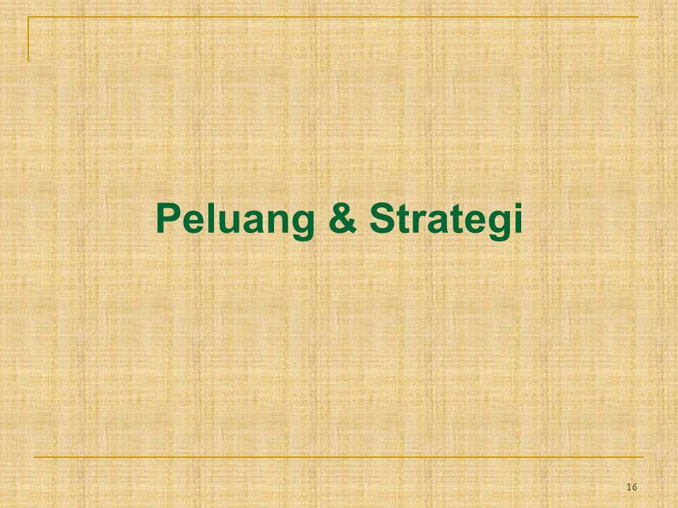 16 Peluang & Strategi