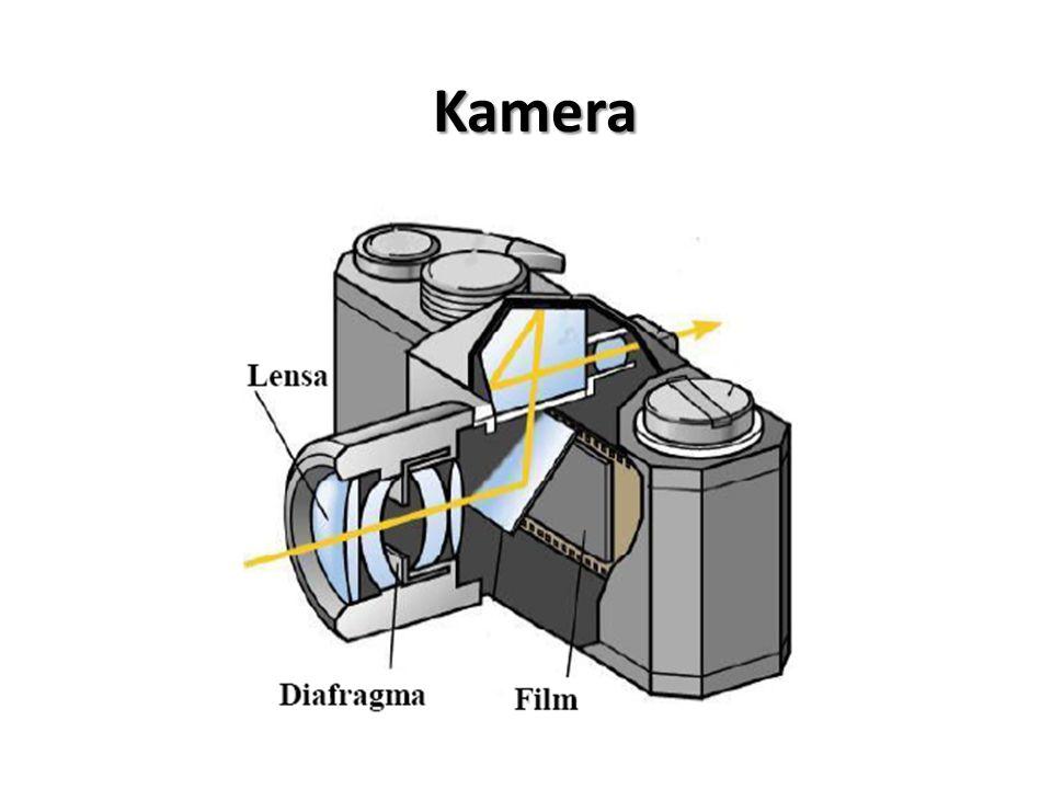 Perbesaran Lup untuk Mata Berakomodasi Maksimum Penggunaan normal sebuah lup adalah berakomodasi maksimum.