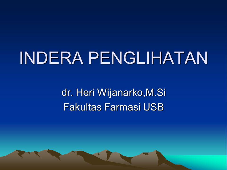 INDERA PENGLIHATAN dr. Heri Wijanarko,M.Si Fakultas Farmasi USB