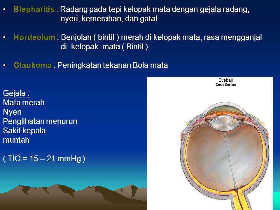 Blepharitis : Radang pada tepi kelopak mata dengan gejala radang, nyeri, kemerahan, dan gatal Hordeolum : Benjolan ( bintil ) merah di kelopak mata, r
