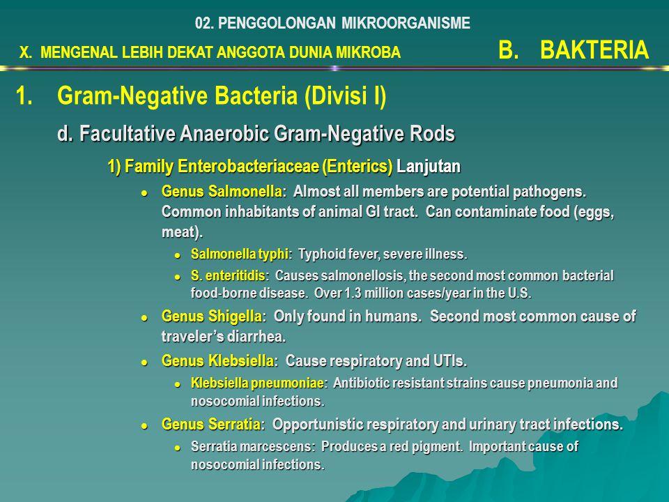 X. MENGENAL LEBIH DEKAT ANGGOTA DUNIA MIKROBA 02. PENGGOLONGAN MIKROORGANISME B.BAKTERIA 1.Gram-Negative Bacteria (Divisi I) d. Facultative Anaerobic