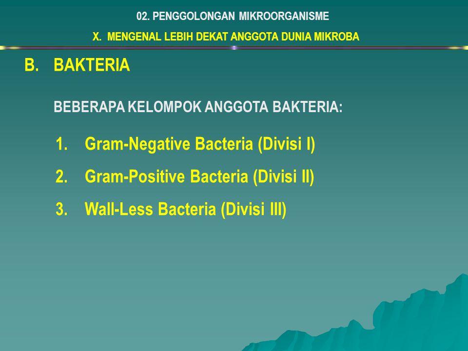 X. MENGENAL LEBIH DEKAT ANGGOTA DUNIA MIKROBA 02. PENGGOLONGAN MIKROORGANISME B.BAKTERIA 1.Gram-Negative Bacteria (Divisi I) 2.Gram-Positive Bacteria