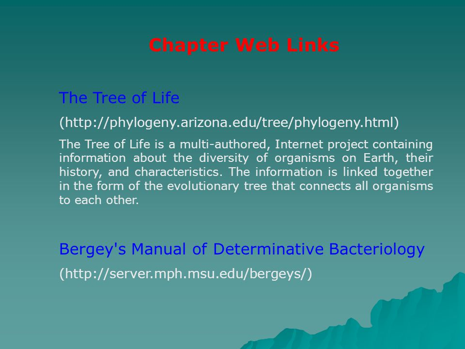 Chapter Web Links The Tree of Life (http://phylogeny.arizona.edu/tree/phylogeny.html) The Tree of Life is a multi-authored, Internet project containin