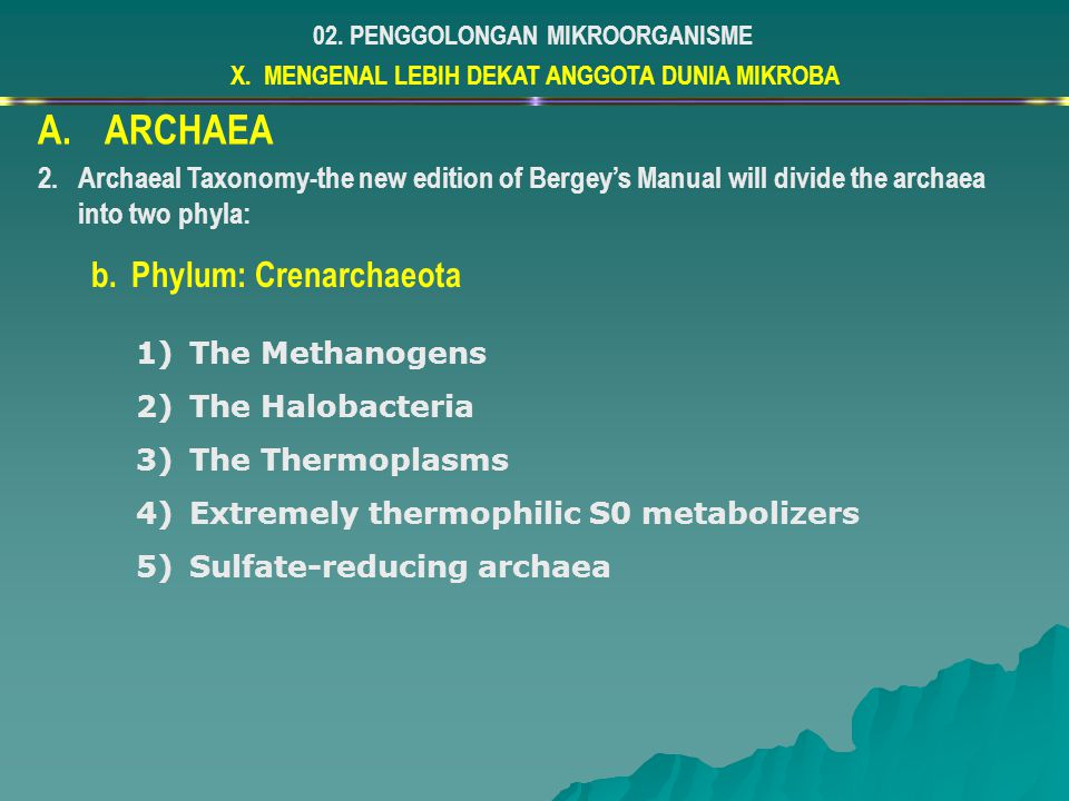 X. MENGENAL LEBIH DEKAT ANGGOTA DUNIA MIKROBA 02. PENGGOLONGAN MIKROORGANISME A.ARCHAEA 2.Archaeal Taxonomy-the new edition of Bergey's Manual will di