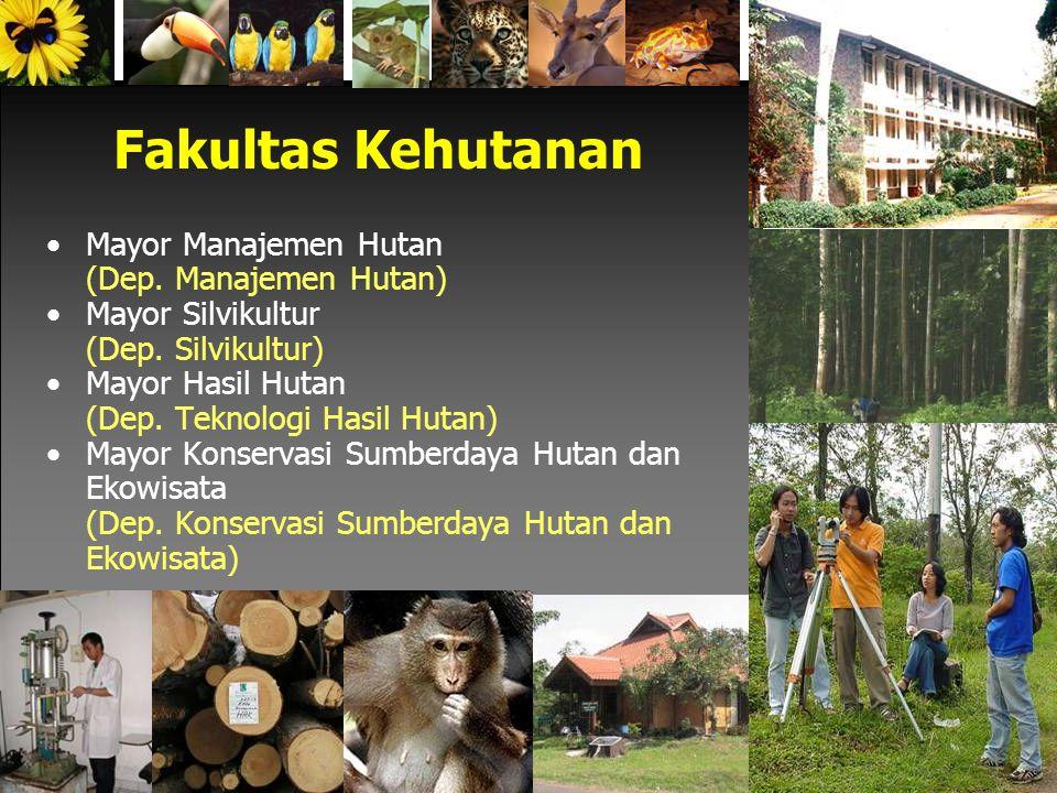 Fakultas Kehutanan Mayor Manajemen Hutan (Dep.Manajemen Hutan) Mayor Silvikultur (Dep.