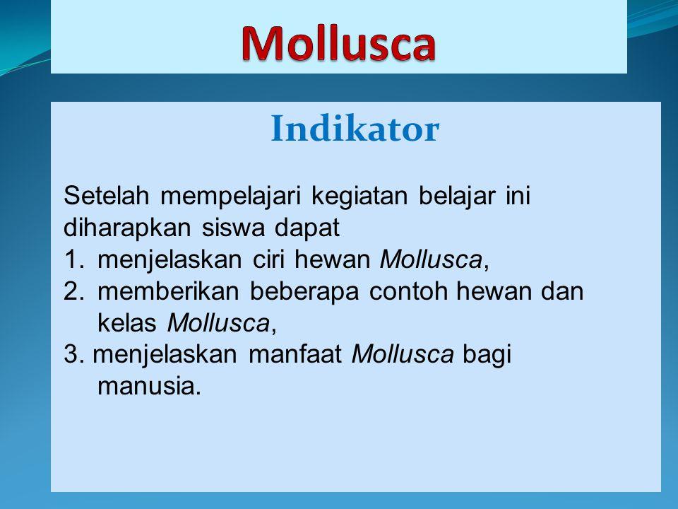 Indikator Setelah mempelajari kegiatan belajar ini diharapkan siswa dapat 1.menjelaskan ciri hewan Mollusca, 2.memberikan beberapa contoh hewan dan ke
