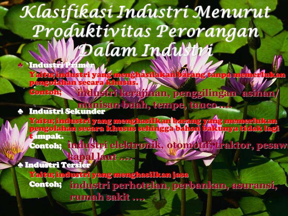 Klasifikasi Industri Menurut Produktivitas Perorangan Dalam Industri ♣Industri Primer Yaitu; industri yang menghasilakan barang tanpa memerlukan pengo