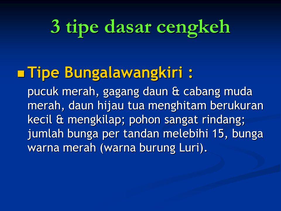 3 tipe dasar cengkeh Tipe Bungalawangkiri : Tipe Bungalawangkiri : pucuk merah, gagang daun & cabang muda merah, daun hijau tua menghitam berukuran ke