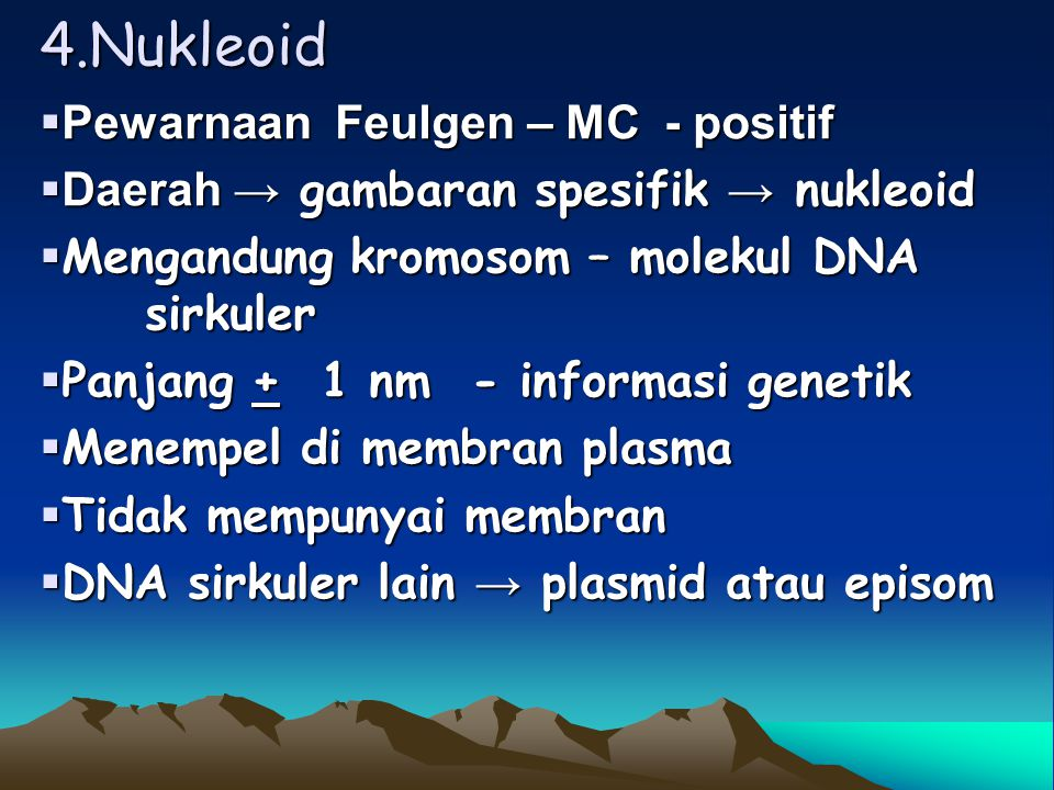 3. Ribosom  Partikel diameter 10 – 15 nm  20.000 – 30.000 partikel  2 sub unit 30 S (svedberg unit) 50 S 50 S  Fungsional 70 S → m RNA  Polirobos