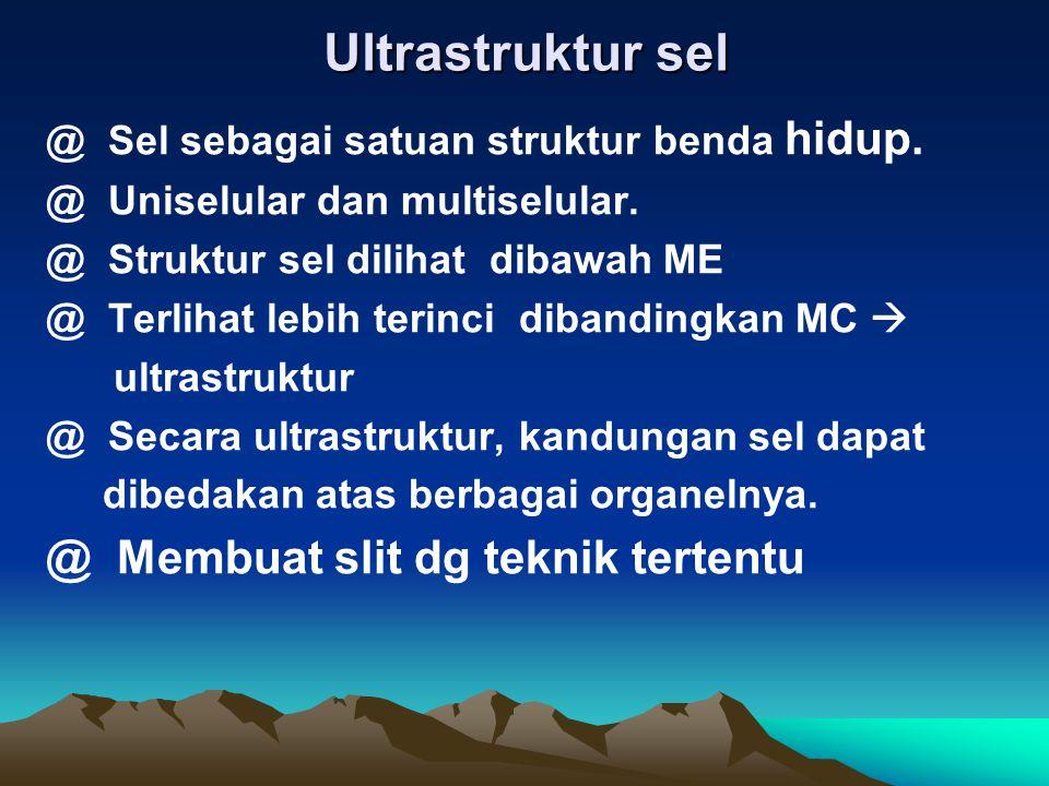 Tujuan Umum : Ultra Struktur Sel Tinjauan Instruksi umum : Memahami struktur & fungsi sel secara umum Tujuan perilaku khusus (TIK) : 1. Menjelaskan pe