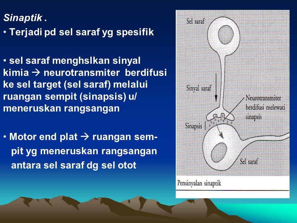 Pensinyalan : Jarak dekat : parakrin, sinaptik Jarak jauh : endokrin (hormon) sbg neurotransmiter Parakrin  mrpkan senyawa kimia yg dihslkan o/ sel p