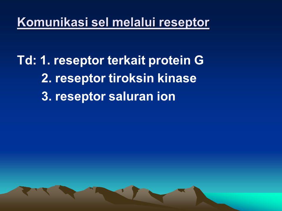 Tahap pensinyalan: 1. 1.Penerimaan : sinyal akan dideteksi o/ protein membran sel sebagai reseptor 2. 2.Transduksi : sinyal akan dirubah menjadi respo