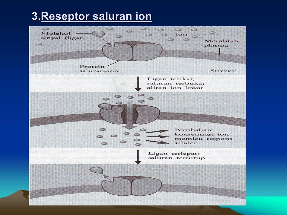 2. Reseptor tiroksin kinase
