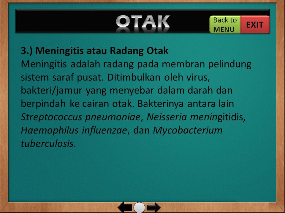 3.) Meningitis atau Radang Otak Meningitis adalah radang pada membran pelindung sistem saraf pusat. Ditimbulkan oleh virus, bakteri/jamur yang menyeba