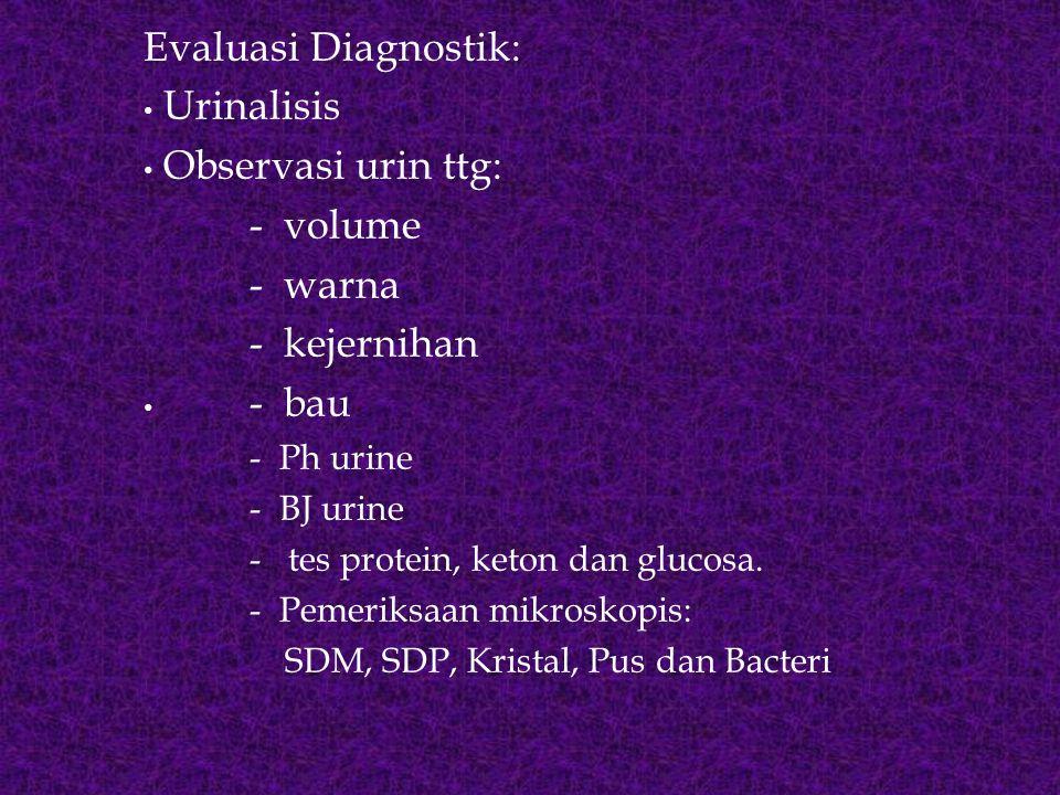 Evaluasi Diagnostik: Urinalisis Observasi urin ttg: - volume - warna - kejernihan - bau - Ph urine - BJ urine - tes protein, keton dan glucosa. - Peme
