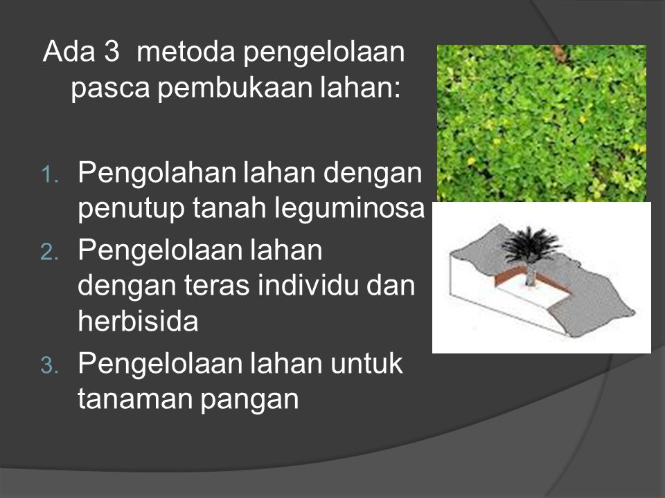 Ada 3 metoda pengelolaan pasca pembukaan lahan: 1.