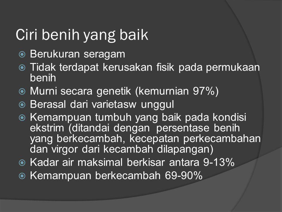 Ciri benih yang baik  Berukuran seragam  Tidak terdapat kerusakan fisik pada permukaan benih  Murni secara genetik (kemurnian 97%)  Berasal dari varietasw unggul  Kemampuan tumbuh yang baik pada kondisi ekstrim (ditandai dengan persentase benih yang berkecambah, kecepatan perkecambahan dan virgor dari kecambah dilapangan)  Kadar air maksimal berkisar antara 9-13%  Kemampuan berkecambah 69-90%