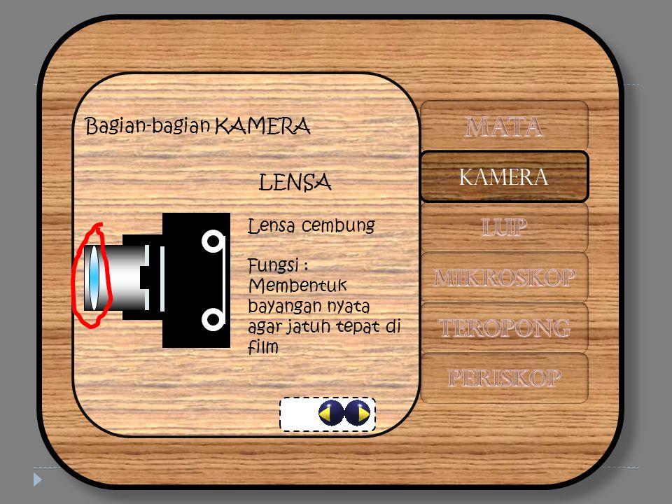 Bagian-bagian KAMERA LENSA Lensa cembung Fungsi : Membentuk bayangan nyata agar jatuh tepat di film KAMERA