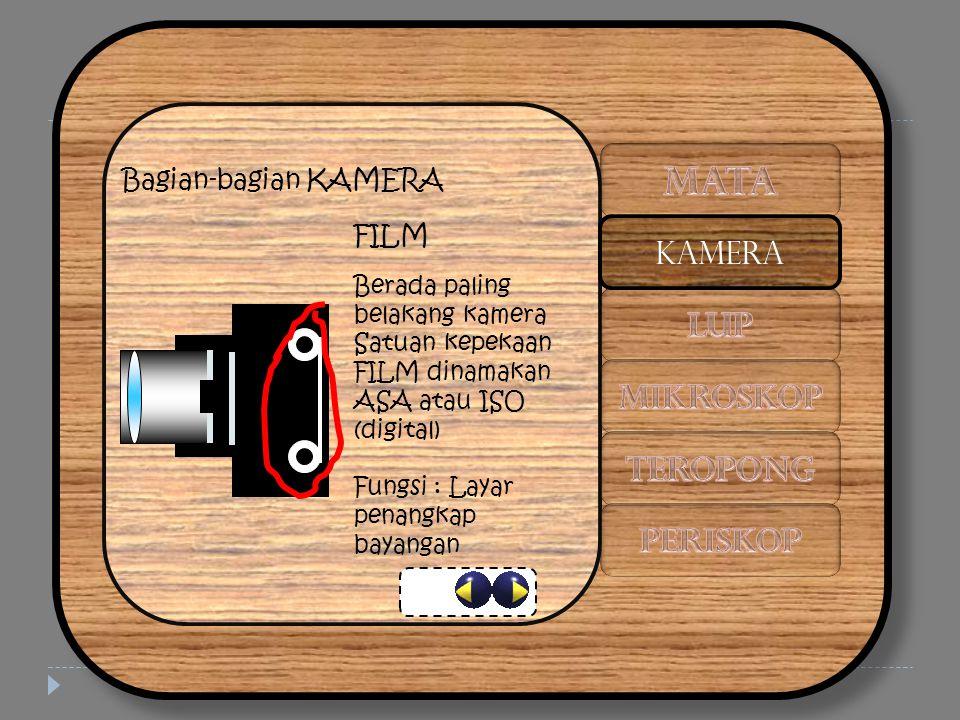 Bagian-bagian KAMERA FILM Berada paling belakang kamera Satuan kepekaan FILM dinamakan ASA atau ISO (digital) Fungsi : Layar penangkap bayangan KAMERA