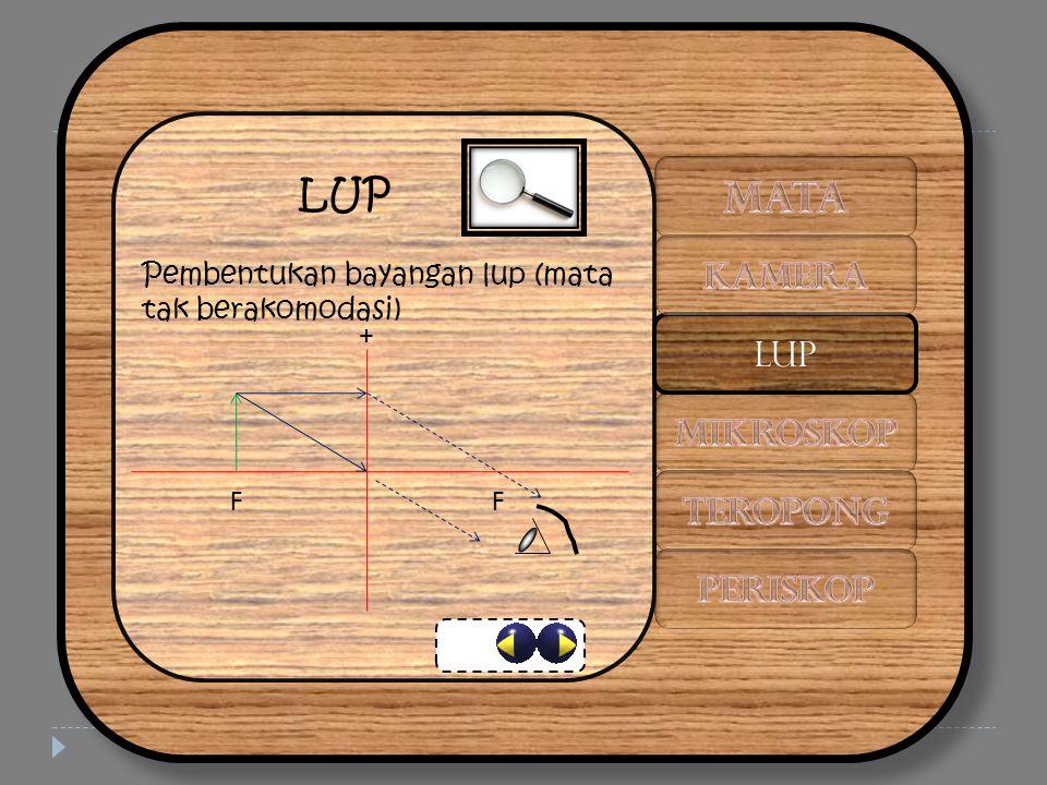LUP Pembentukan bayangan lup (mata tak berakomodasi) + FF LUP
