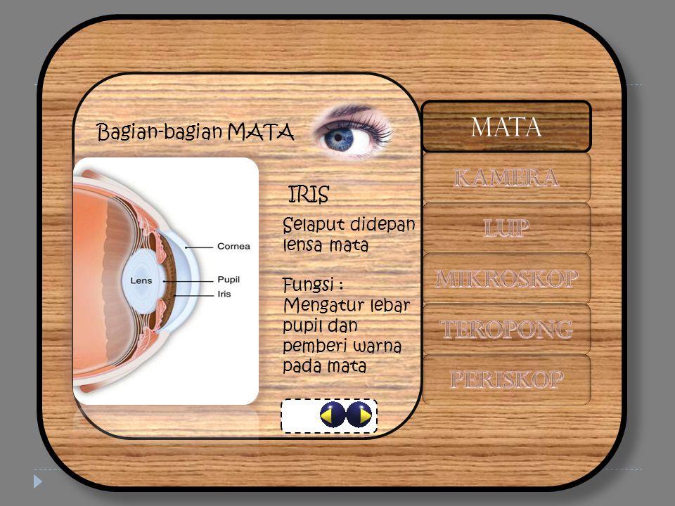 Bagian-bagian MATA IRIS Selaput didepan lensa mata Fungsi : Mengatur lebar pupil dan pemberi warna pada mata MATA