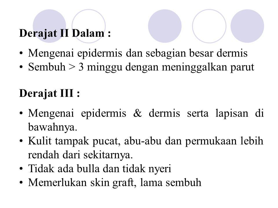 Derajat II Dalam : Mengenai epidermis dan sebagian besar dermis Sembuh > 3 minggu dengan meninggalkan parut Derajat III : Mengenai epidermis & dermis
