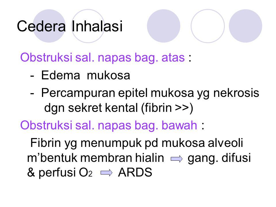 Cedera Inhalasi Obstruksi sal. napas bag. atas : - Edema mukosa - Percampuran epitel mukosa yg nekrosis dgn sekret kental (fibrin >>) Obstruksi sal. n