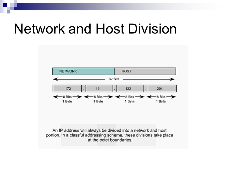 Network and Host Division