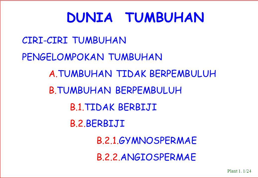 DUNIA TUMBUHAN CIRI-CIRI TUMBUHAN PENGELOMPOKAN TUMBUHAN A.TUMBUHAN TIDAK BERPEMBULUH B.TUMBUHAN BERPEMBULUH B.1.TIDAK BERBIJI B.2.BERBIJI B.2.1.GYMNOSPERMAE B.2.2.ANGIOSPERMAE Plant 1.
