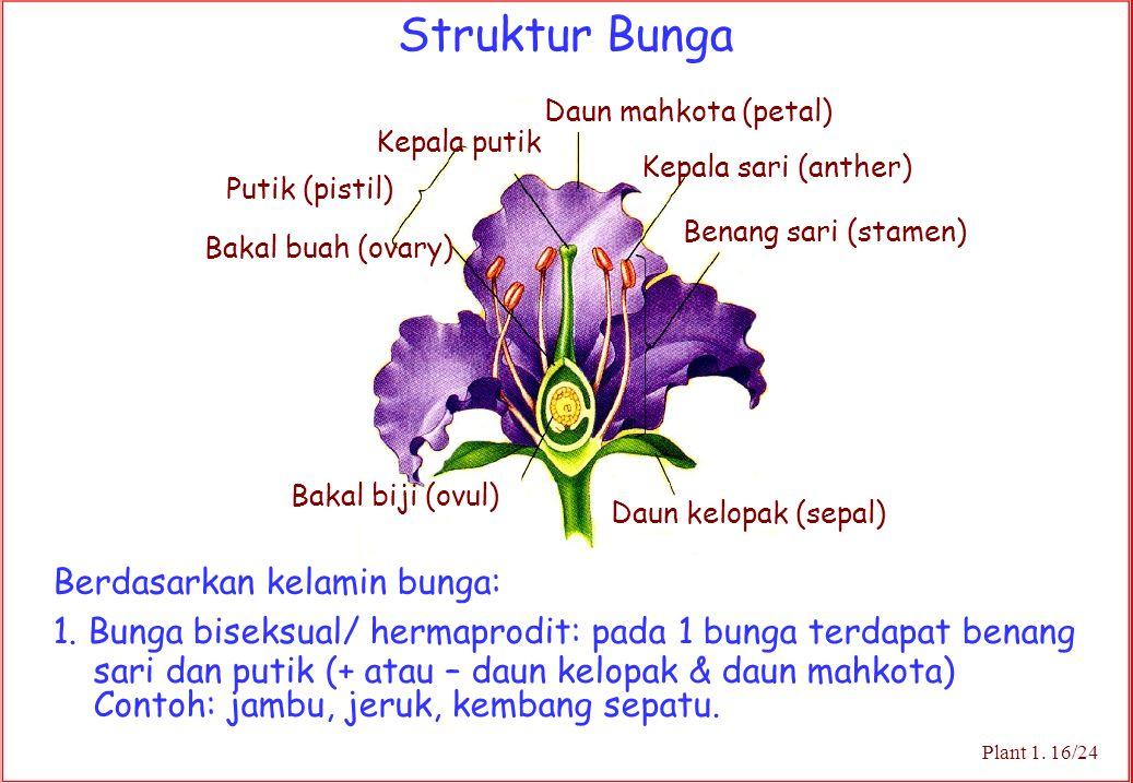 Struktur Bunga Plant 1. 16/24 Daun mahkota (petal) Kepala sari (anther) Benang sari (stamen) Daun kelopak (sepal) Kepala putik Putik (pistil) Bakal bu
