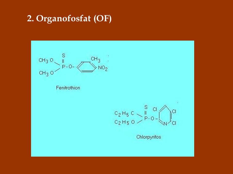 2. Organofosfat (OF)