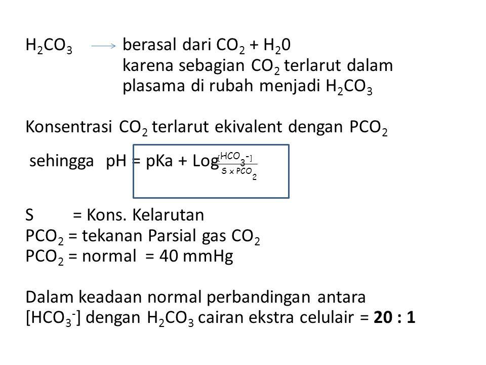 H 2 CO 3 berasal dari CO 2 + H 2 0 karena sebagian CO 2 terlarut dalam plasama di rubah menjadi H 2 CO 3 Konsentrasi CO 2 terlarut ekivalent dengan PC