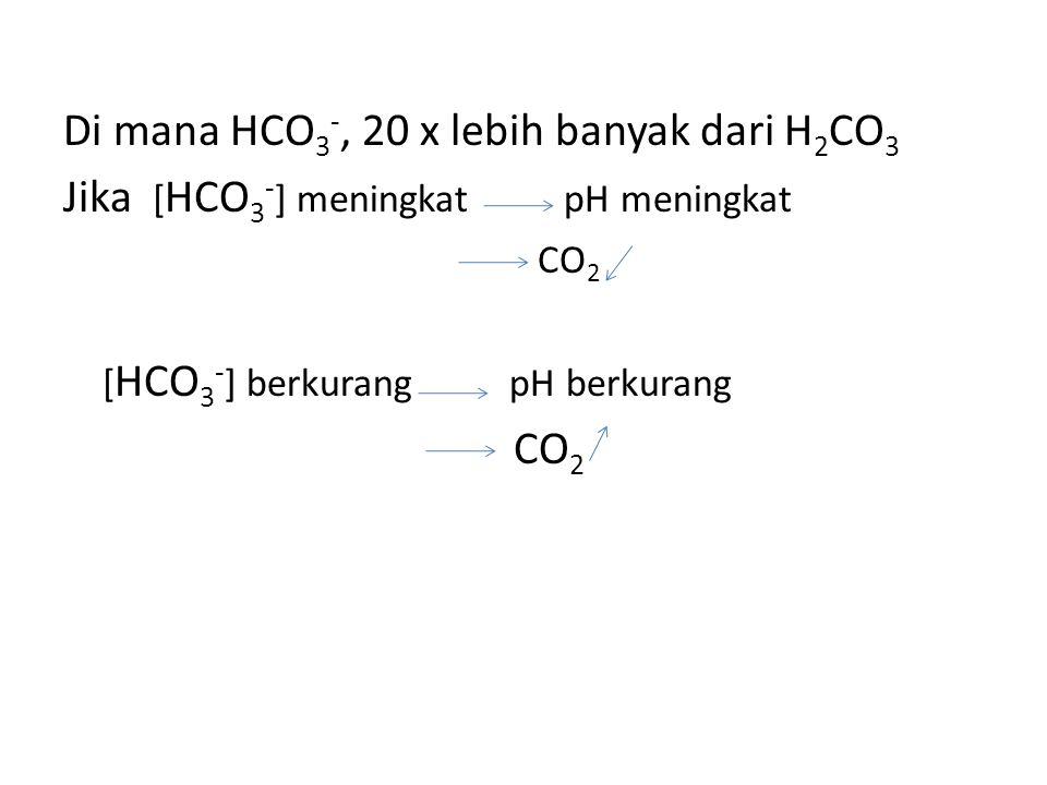 Di mana HCO 3 -, 20 x lebih banyak dari H 2 CO 3 Jika [ HCO 3 - ] meningkat pH meningkat CO 2 [ HCO 3 - ] berkurang pH berkurang CO 2